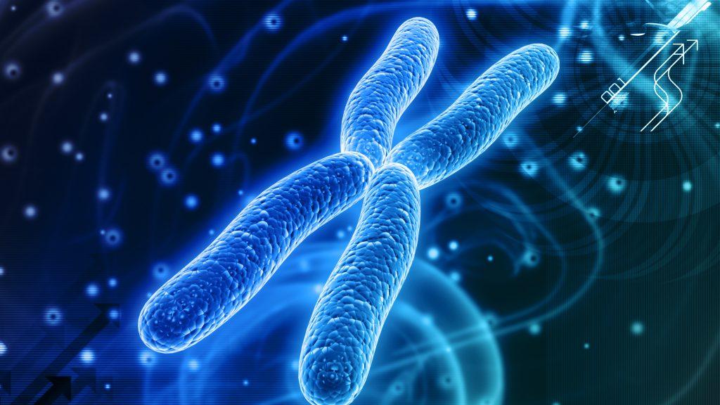 pocetni-zmeny-chromozomu1
